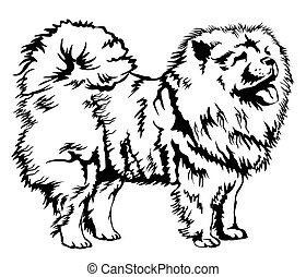 Decorative Chow Chow vector illustration - Decorative black...