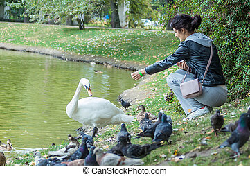 She feeds the swans, wild ducks, pigeons. on the shore of...