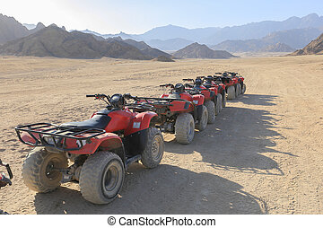 Quad bike, ATV - Quad bikes moto safari in the desert in...