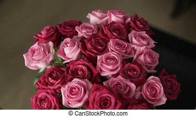 Beautiful red and pink roses shot