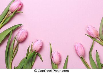 Pink tulips on the pink background. Flat lay, top view....