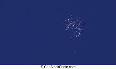 Beautiful fireworks on background of blue sky.