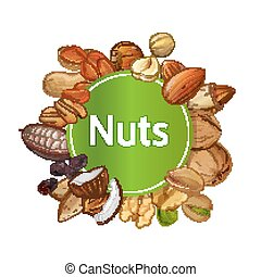 Various nuts round isolated composition - Various nuts round...