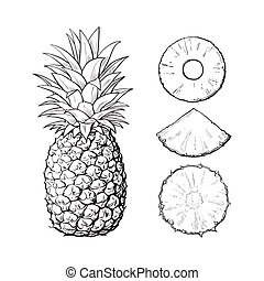 Whole pineapple and slices - peeled, unpeeled, wedge, vector...
