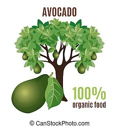 Avocado tree isolated with fruit below, 100 percent organic...