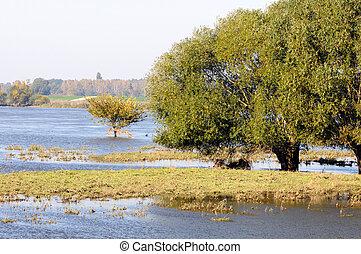 Elbe river landscape during flood - Elbe river landscape...