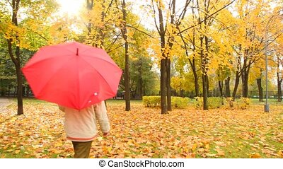 boy walks in autumn park from camera