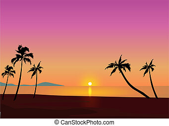 Tropical Sunset - Palm Trees At Sunset