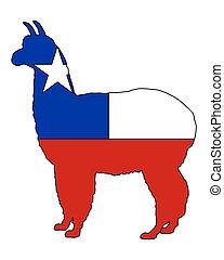 Chilean alpaca