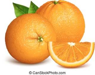 Whole ripe oranges and slices of orange. Vector illustration...