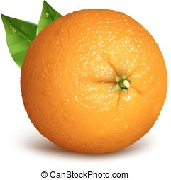 Orange whole with leaves. Vector illustration of oranges....