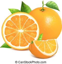 Orange whole and slices of oranges. Vector illustration...