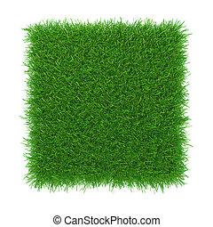 Grass. natural background texture. fresh spring grass. 3d...