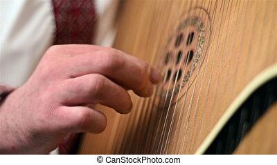 Hand Playing The Bandura, Ukrainian Musical Instrument