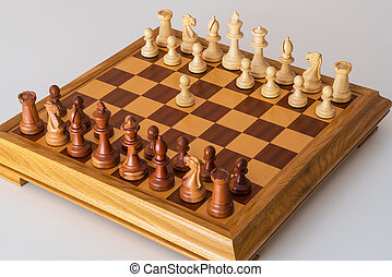 The first move a pawn on the chess Board - The first move a...