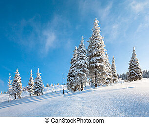 Snowy landscape - winter rime and snow covered fir trees on...