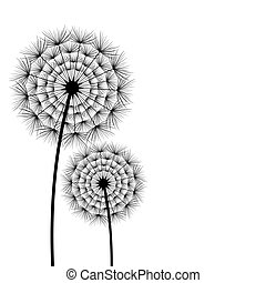 Two spring and summer flowers dandelions over white - Two...