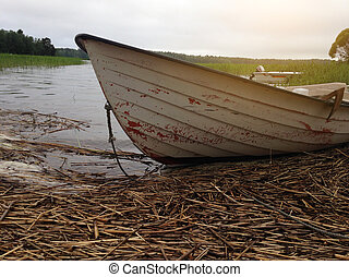 Boat on lake in summer on background of forest