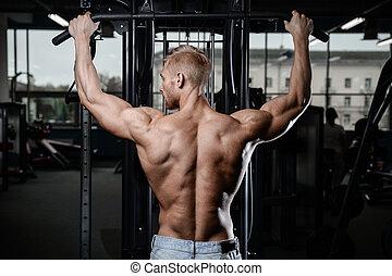 back muscle man's back Male bodybuilder flexing his back