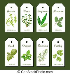 Cooking herbs tags. Cute label set. Culinary herbs. Bunch of...