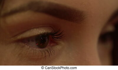 close up of beautiful female eyes with nice make up looking...