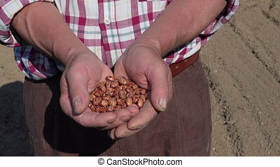 Seeds in farmer hands, organic food health and resource...