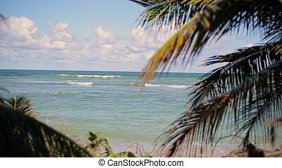 Caribbean sea and the beach at sunny day