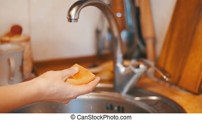 Woman with Sponge and Detergent Washing Dishes in the Home...