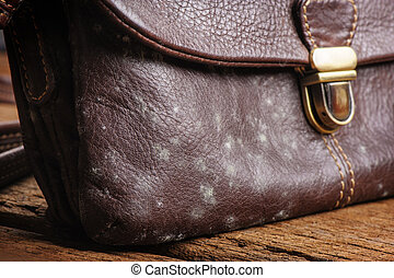 mould on bag - mould on old brown leather bag, fungus on...