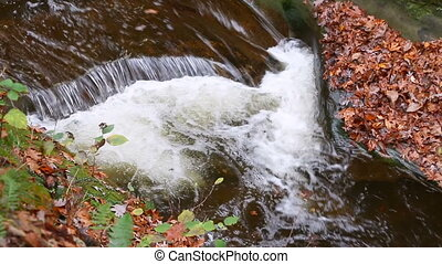 Gorge at Fall Creek Loop - Whitewater splashes through The...
