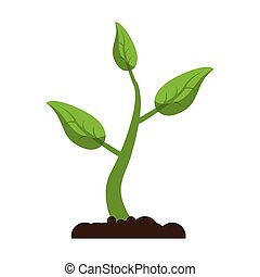 sprout growing plant eco