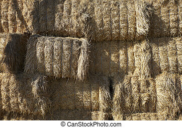 agriculture hay bale farming