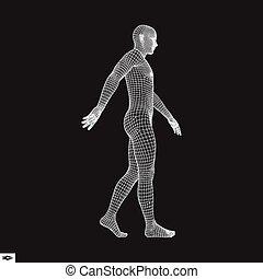 Walking Man. 3D Human Body Model. Human Body Wire Model.