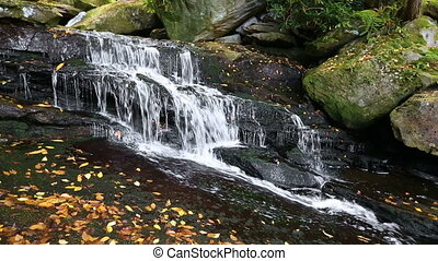 Waterfall on Shays Run Loop - Seamless loop features the top...