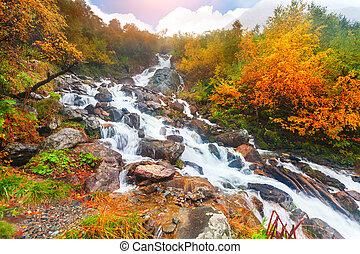 hermoso, otoño, cascada, bosque, cascada