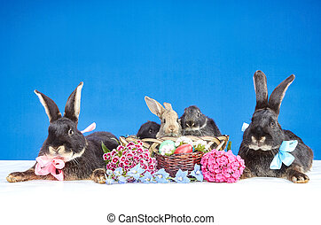 Five rabbits and Easter basket