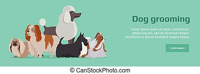 Dog Grooming Banner. Long Haired Dog Breeds - Dog grooming...