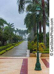 alley tropical downpour - downpour