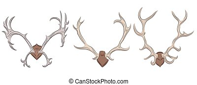 Set of different deer antlers. Vector element for your...
