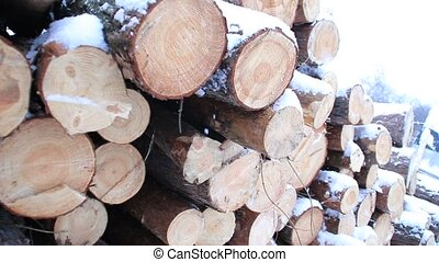 Snowy log stack lumber in winter. Woodpile of pine - Logs...
