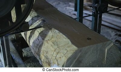 Sawing boards from logs with band saw - Closeup band saw...