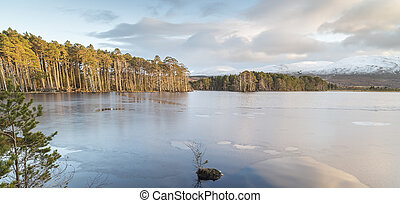 Loch Mallachie in the Cairngorms National Park. - Loch...