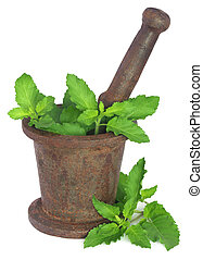 Holy basil or tulsi leaves in a vintage mortar over white...