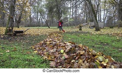 woman tidying leaves in garden backyard. Zoom in. 4K - woman...