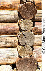 Old weathered and rotten log end rings cross section from...