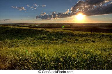 Nuvens, pradaria, céu, Tempestade,  Saskatchewan