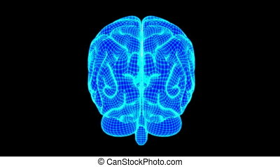Brain Glow Wireframe Blue 21 - Loopable abstract brain...