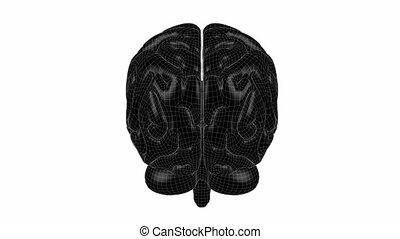 Brain Wireframe Black 08 - Loopable abstract brain animation...