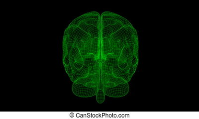 Brain Wireframe XRay Green 18