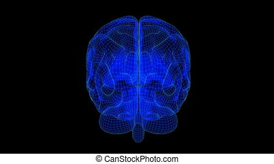 Brain Wireframe Xray Blue19 - Loopable abstract brain...